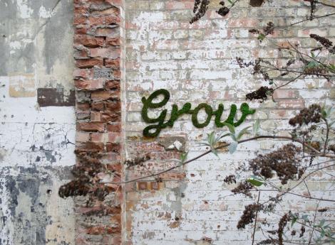 w_grow_3-1