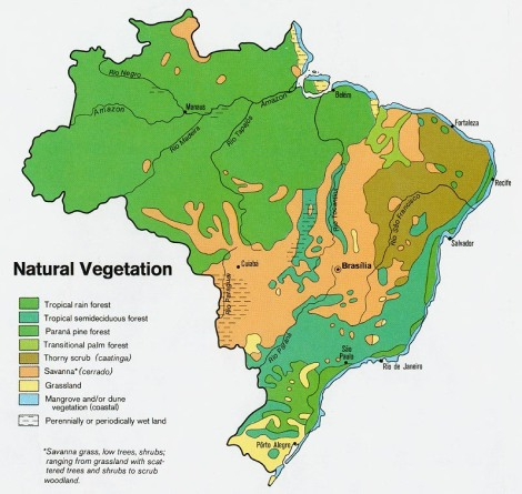 Brazil_veg_1977