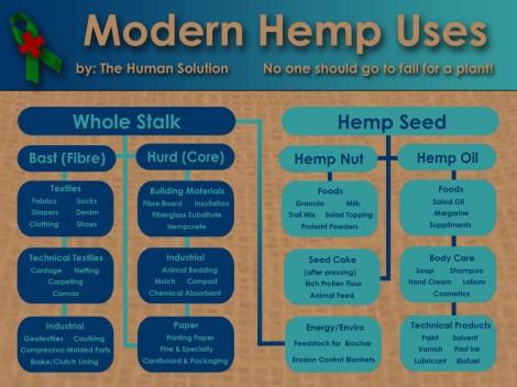 MODERN-USES-OF-HEMP-THS-1024x768