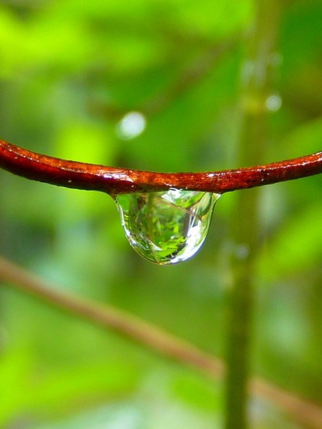 waterdrop-7721_640