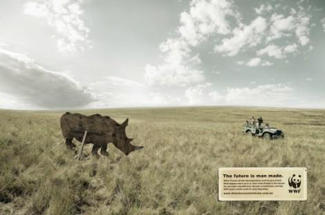 WWF_RHINO-550x365