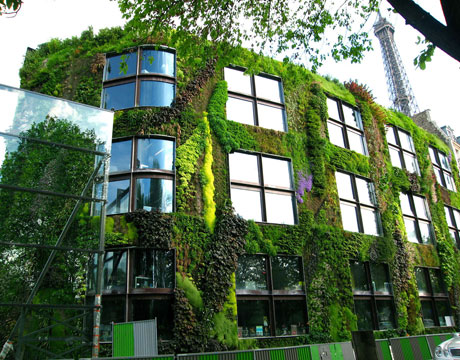The walls of the Musée des Arts Premiers Quai Branly in Paris were created in 2004 by Patrick Blanc, & are completely covered in vegetation. Photo by Patrick Blanc / Exit Art.